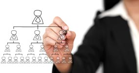 Organizational Structure of a Company • Management Consulting Services