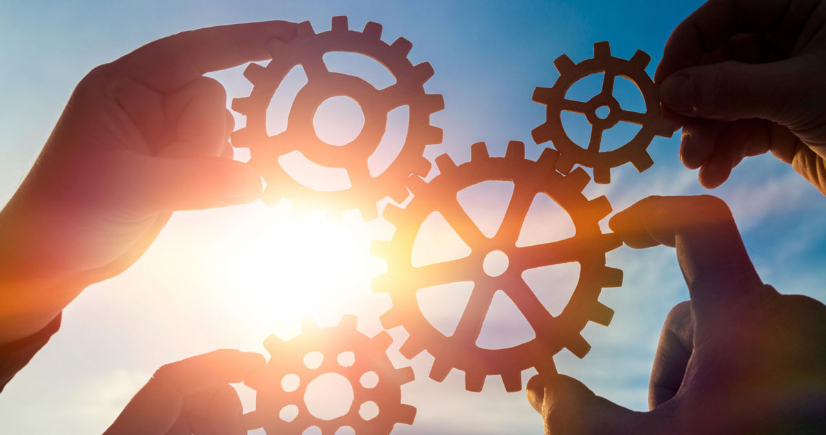 Структура компании и бизнеса и структурные изменения • Услуги бизнес консалтинга
