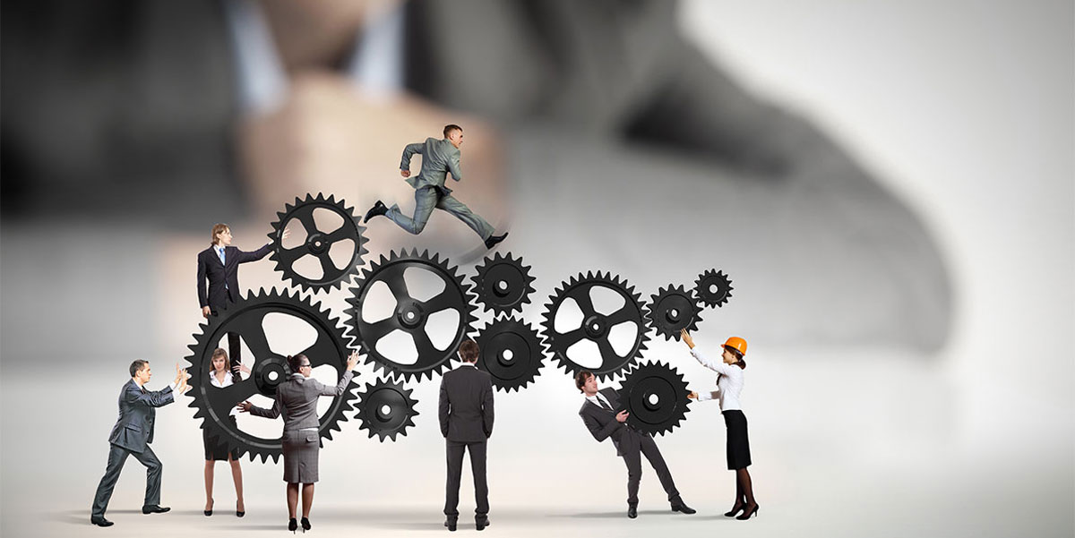 Optimization and Reorganization of a Group of Companies • Management Consulting Services