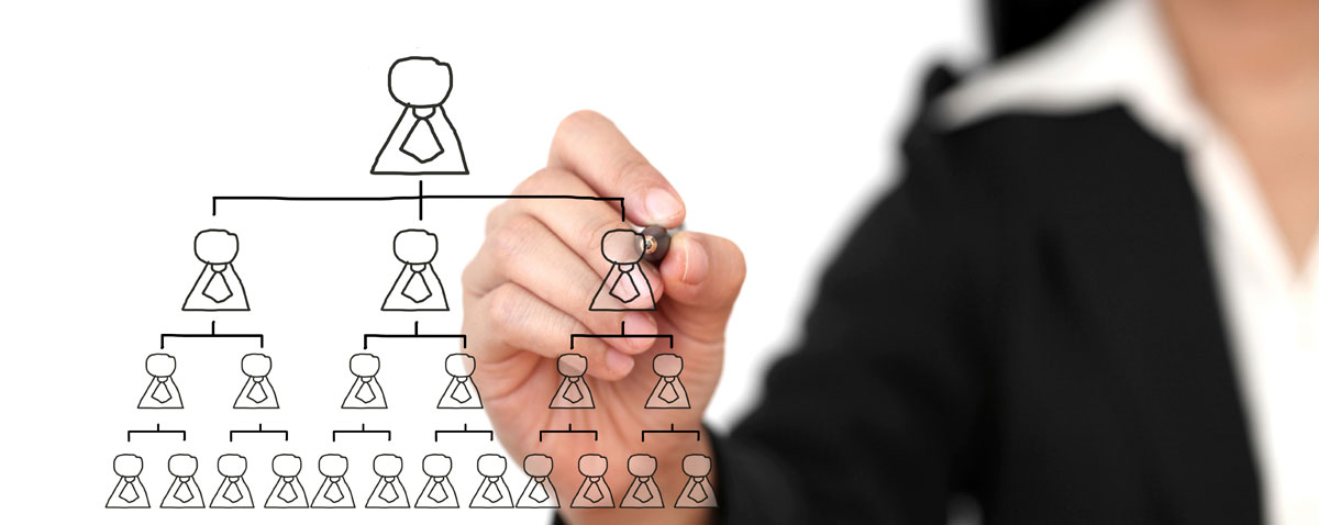 Организационная структура предприятия или компании • Услуги управленческого консалтинга