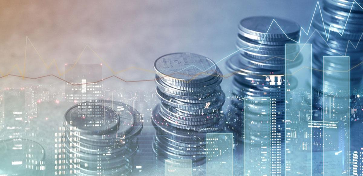 Постановка инвестиционного процесса • Услуги управленческого консалтинга