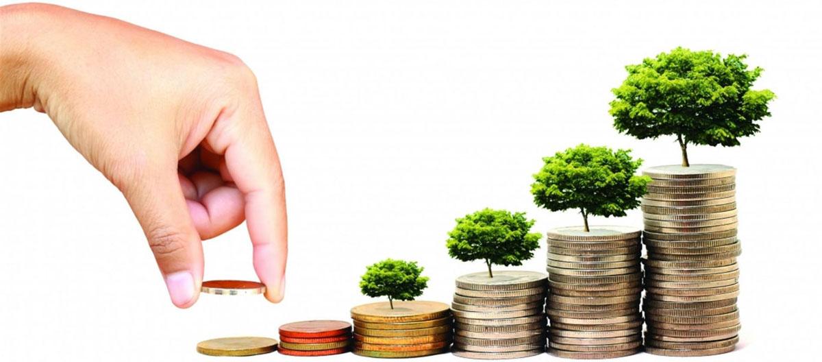 Разработка инвестиционного процесса и его внедрение • Опыт и проекты управленческого консалтинга