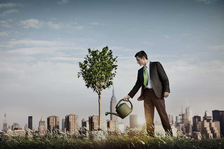 Стратегия роста: инструмент развития бизнеса в долгосрочной перспективе